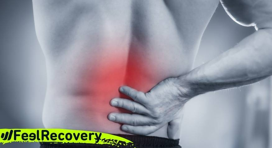 What are the main causes of back pain?