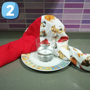 Step 2 - Place the bag on the same plate as the glass of water
