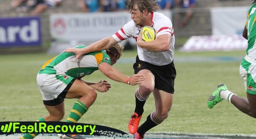 ¿Qué características debes tener en cuenta antes de elegir la mejor rodillera deportiva para jugadores de rugby?